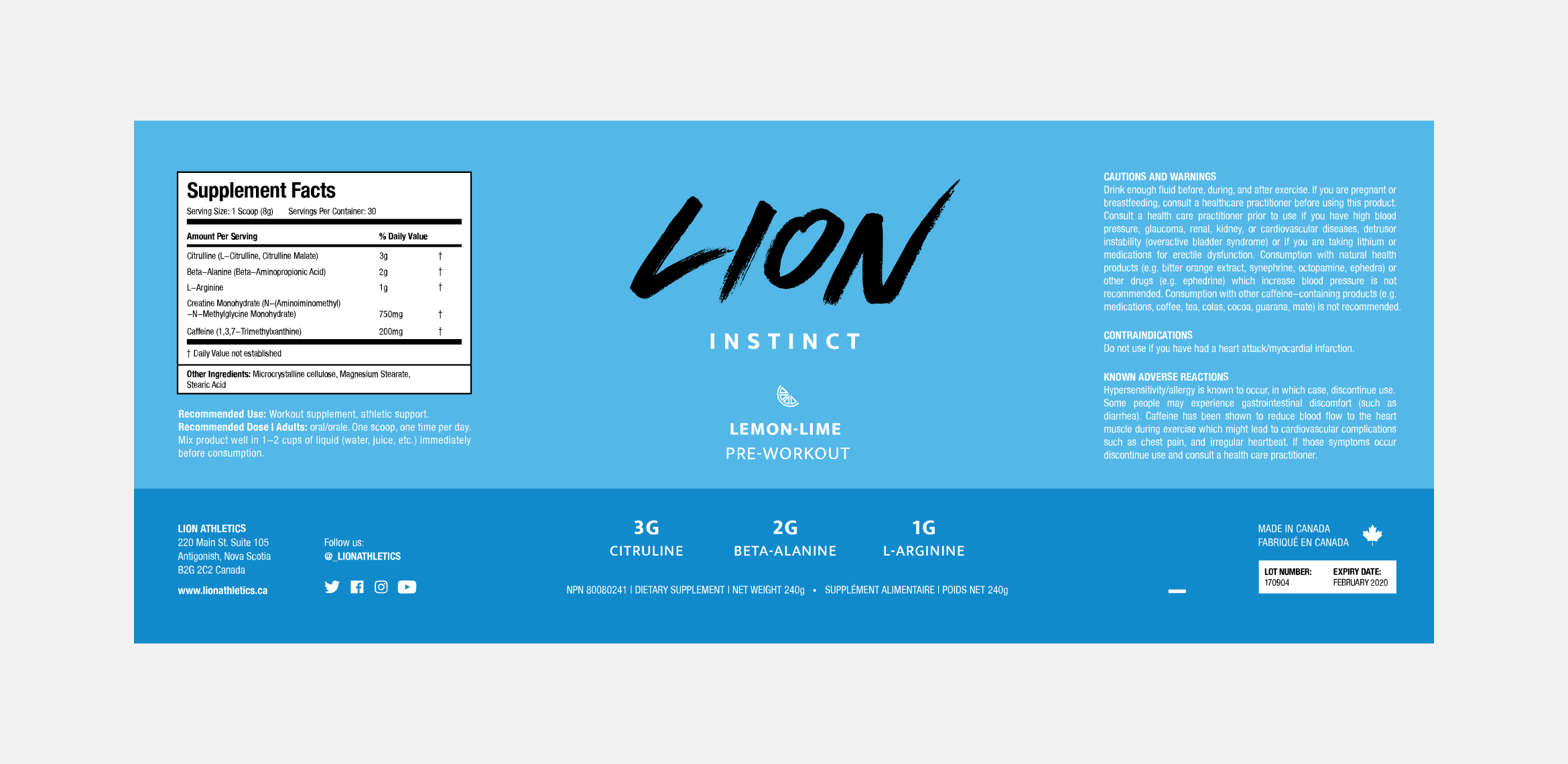 Jordan_Website_Lion13-compressor